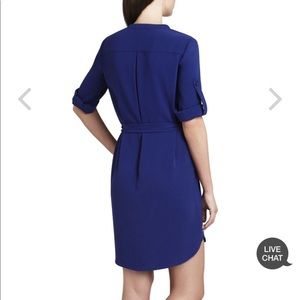 BCBGMaxAzria Dresses - BCBGMaxAzria Tesa Long-Sleeve Pintucked Shift